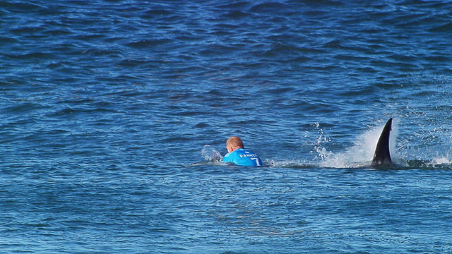 Mick Fanning Attacked by a Shark at J-Bay