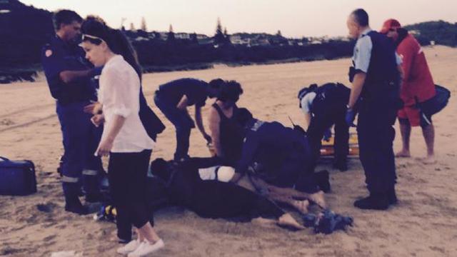 Shark Attack at Port Macquarie Lighthouse Beach